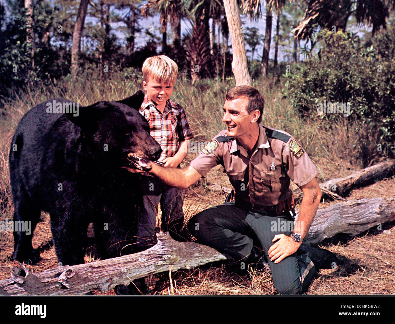 GENTLE BEN (TV) CLINT HOWARD, DENNIS WEAVER GENB 002 CP Stock Photo
