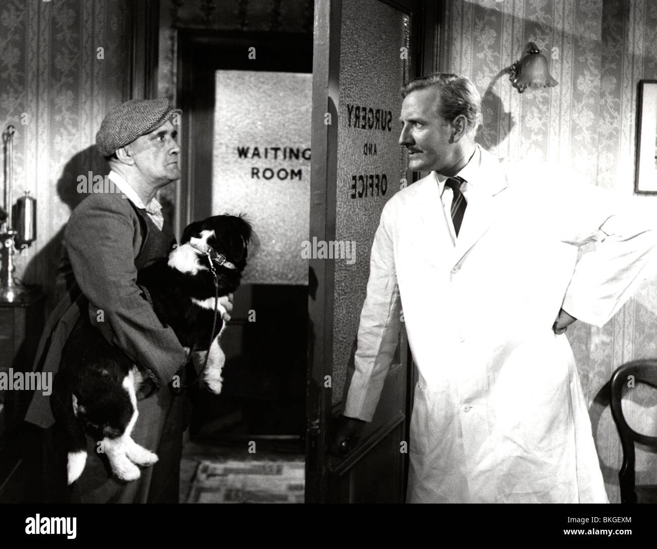 IN THE DOGHOUSE (1961) LESLIE PHILLIPS ITDH 002P - Stock Image