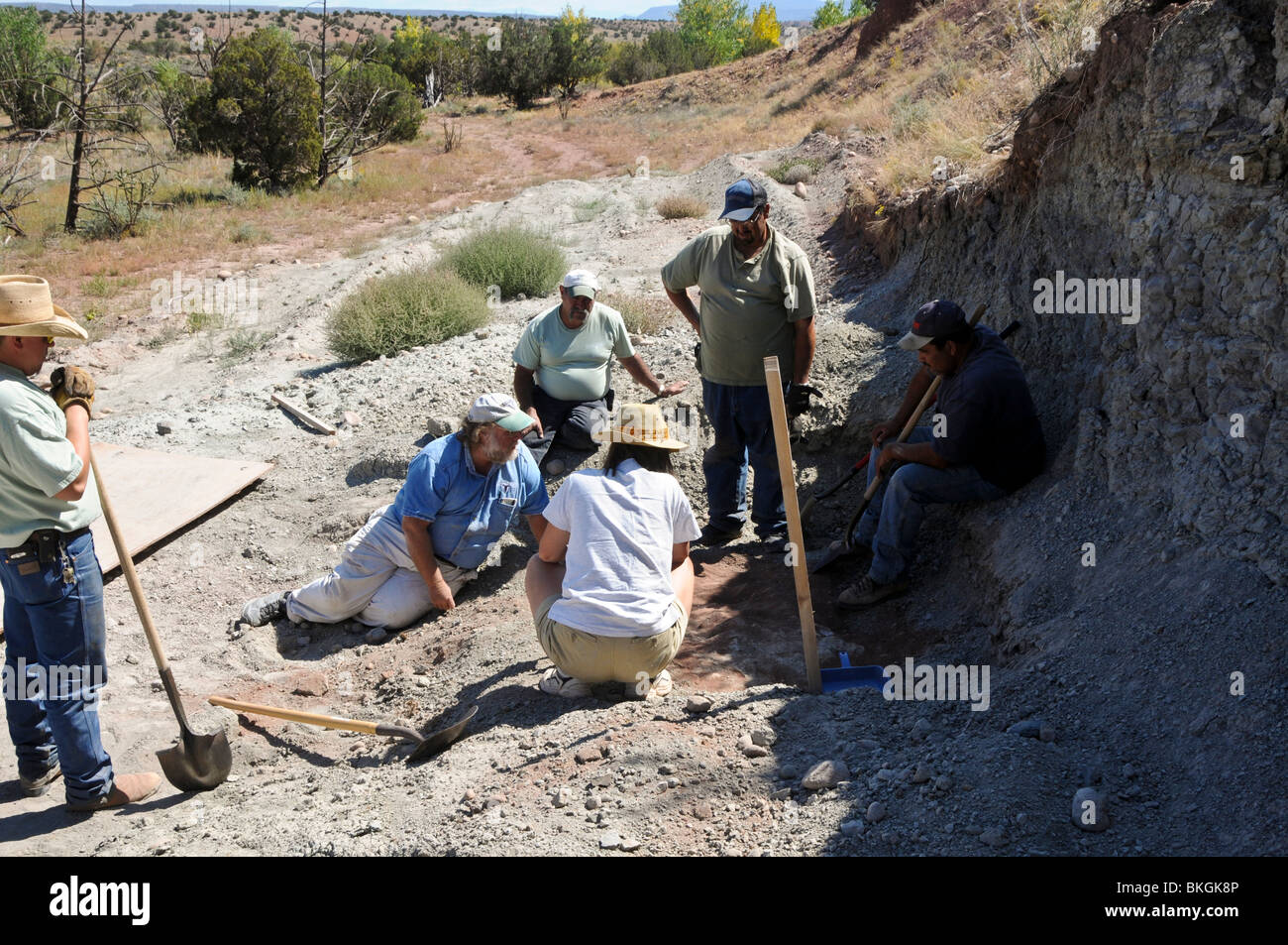 Dinosaur dig site in New Mexico, landscape - Stock Image