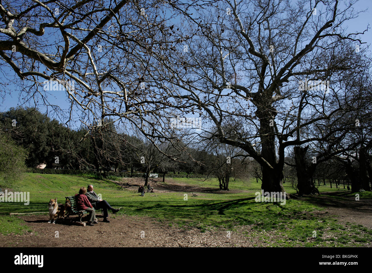 An elderly couple and their dog sit in the gardens of the Villa Borghese in Rome, March 8, 2008. Photo/Chico Sanchez Stock Photo