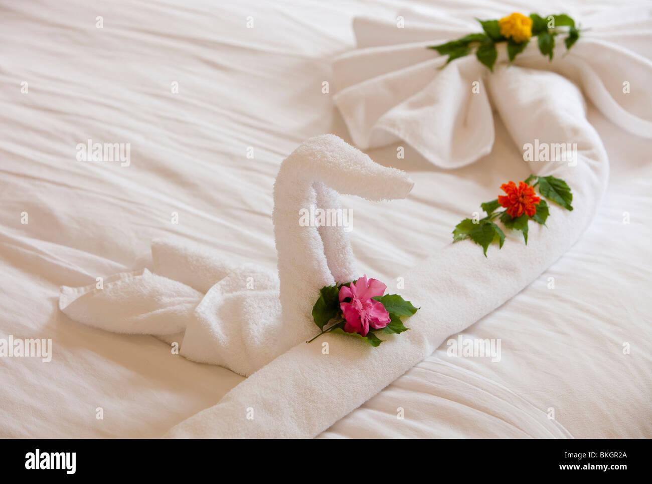 Towel Swan Stock Photos Towel Swan Stock Images Alamy