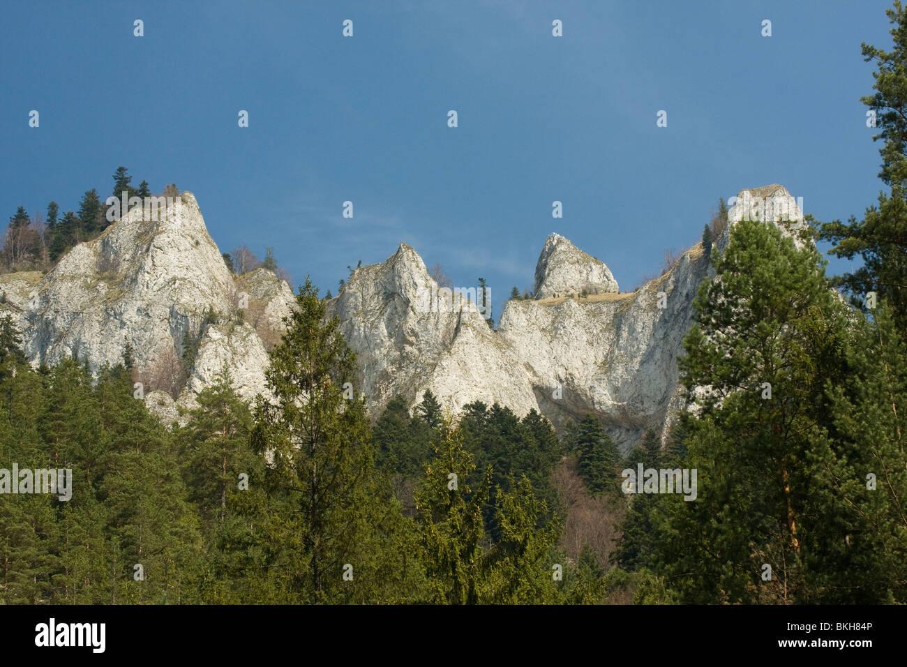 De Drie Kronen vormen 1 van de opvallendste bergtoppen in het Nationaal Park Pieniny. The Three Crowns form one Stock Photo