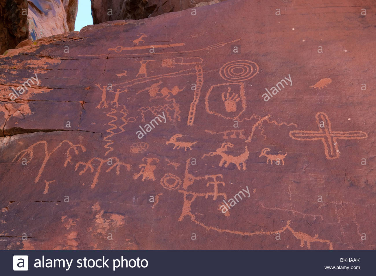 Ancient Anasazi petroglyphs cover a rock face, known as Atlatl Rock in the Valley of Fire State Park, Nevada. - Stock Image