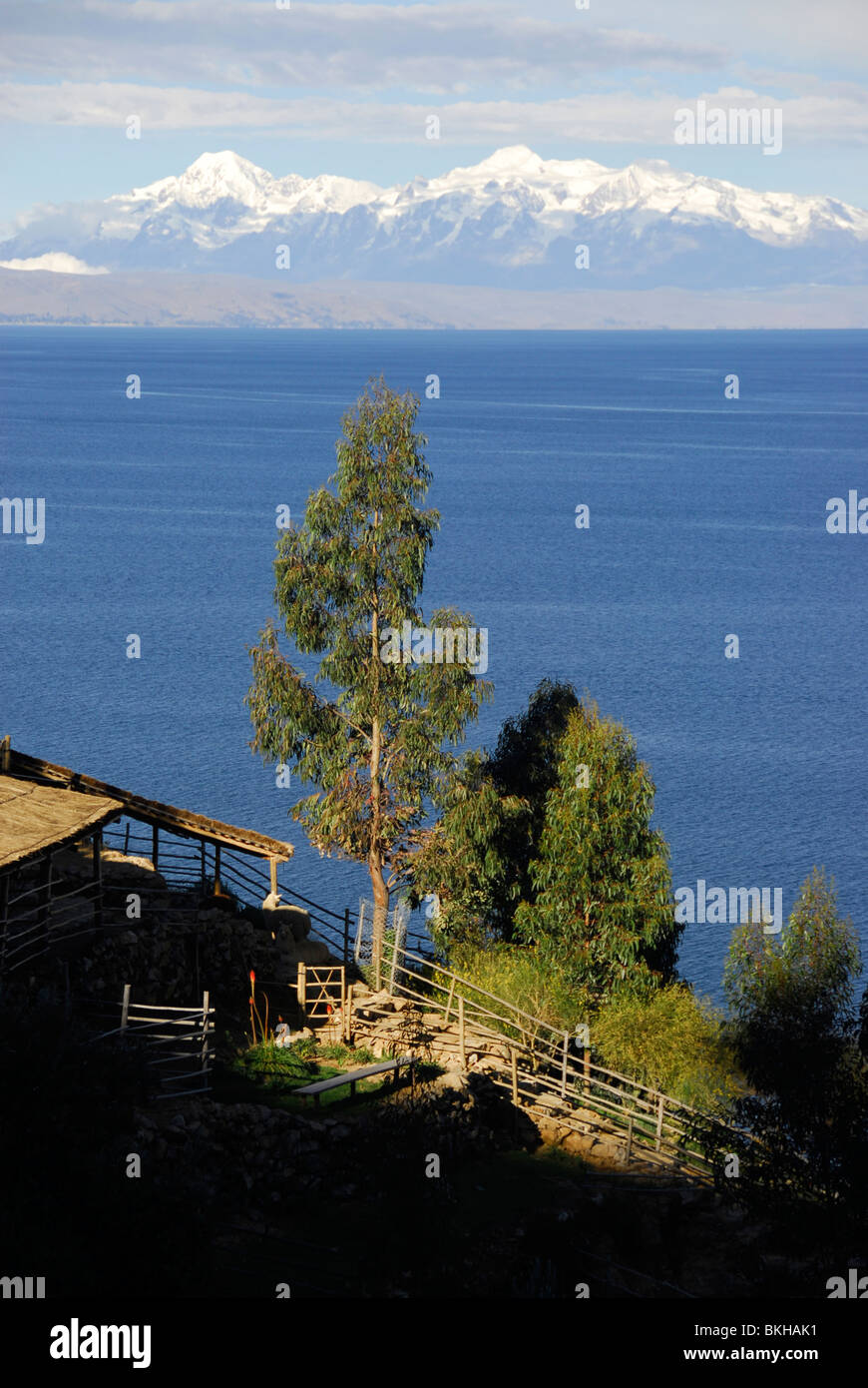 Snowy mountains as seen from Isla del Sol, Bolivia, South America - Stock Image
