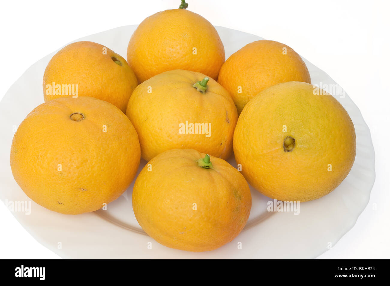 a group of ripe oranges on a white plate isolated on white background - Stock Image