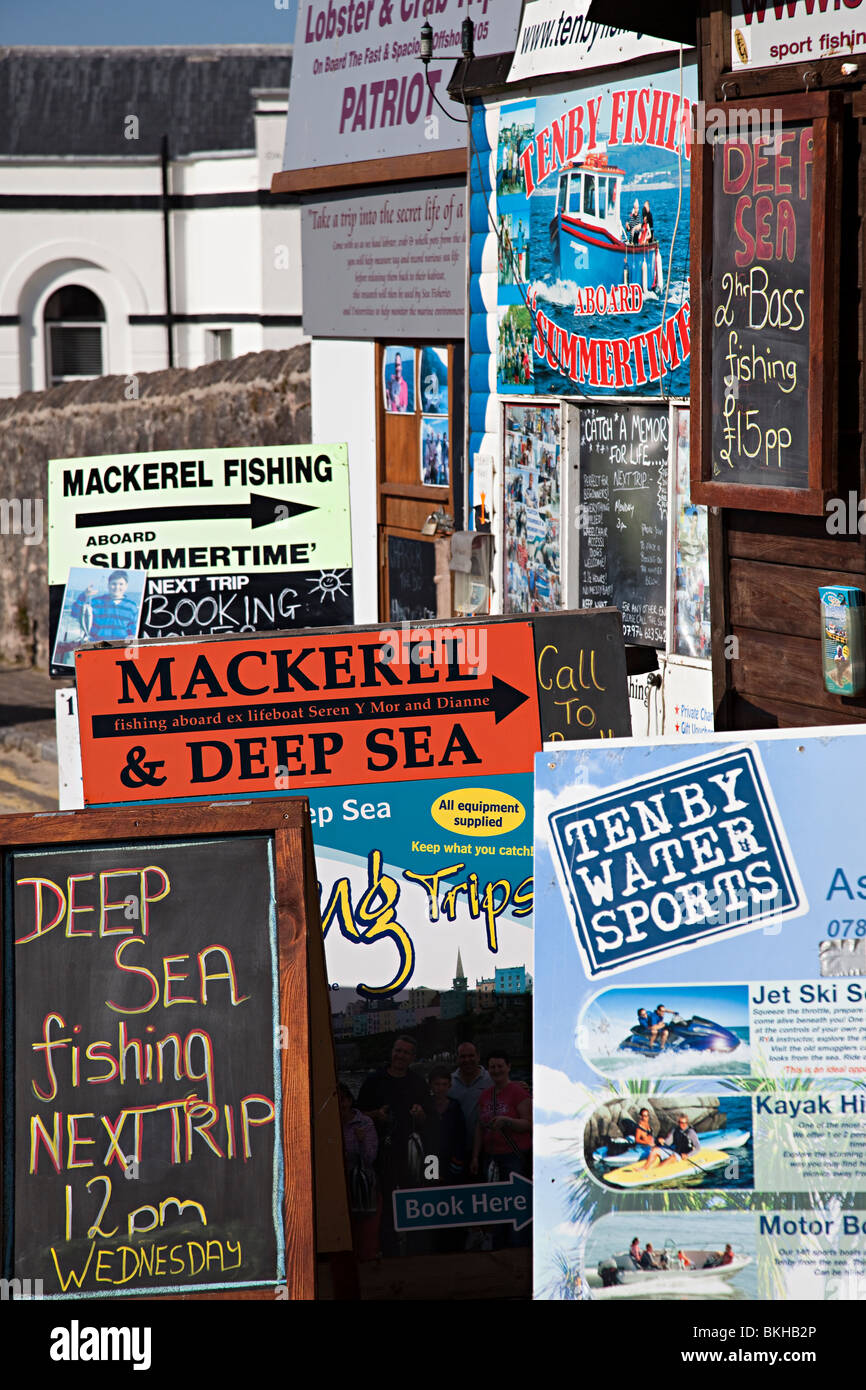 Fishing and boat trip advertisements at harbour Tenby Wales UK - Stock Image