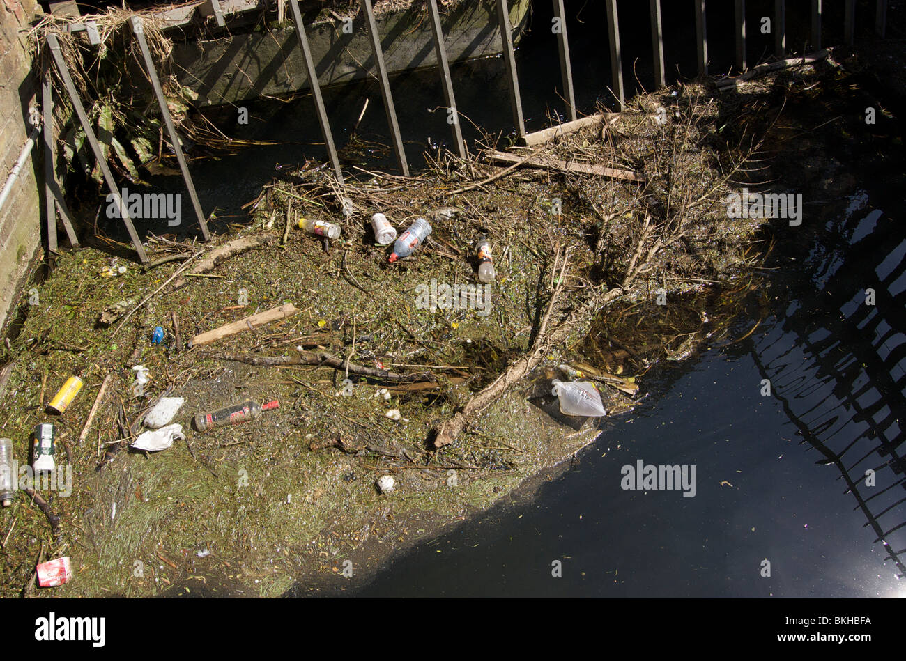 River Pollution - Stock Image