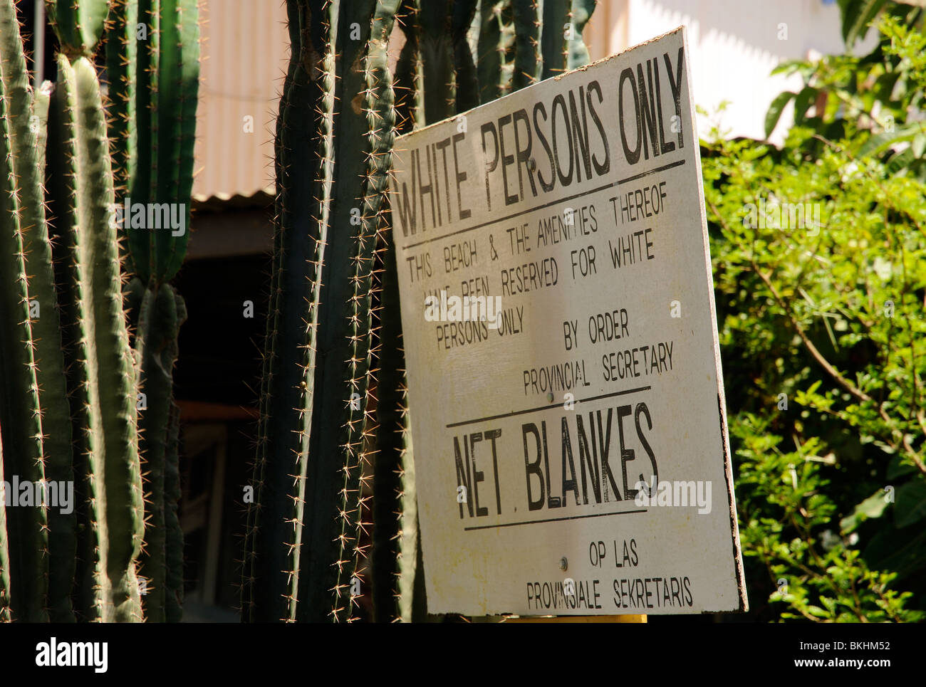Historic Apartheid sign 'White Persons Only' 'No Blacks' used on a South African beach pre 1994 - Stock Image