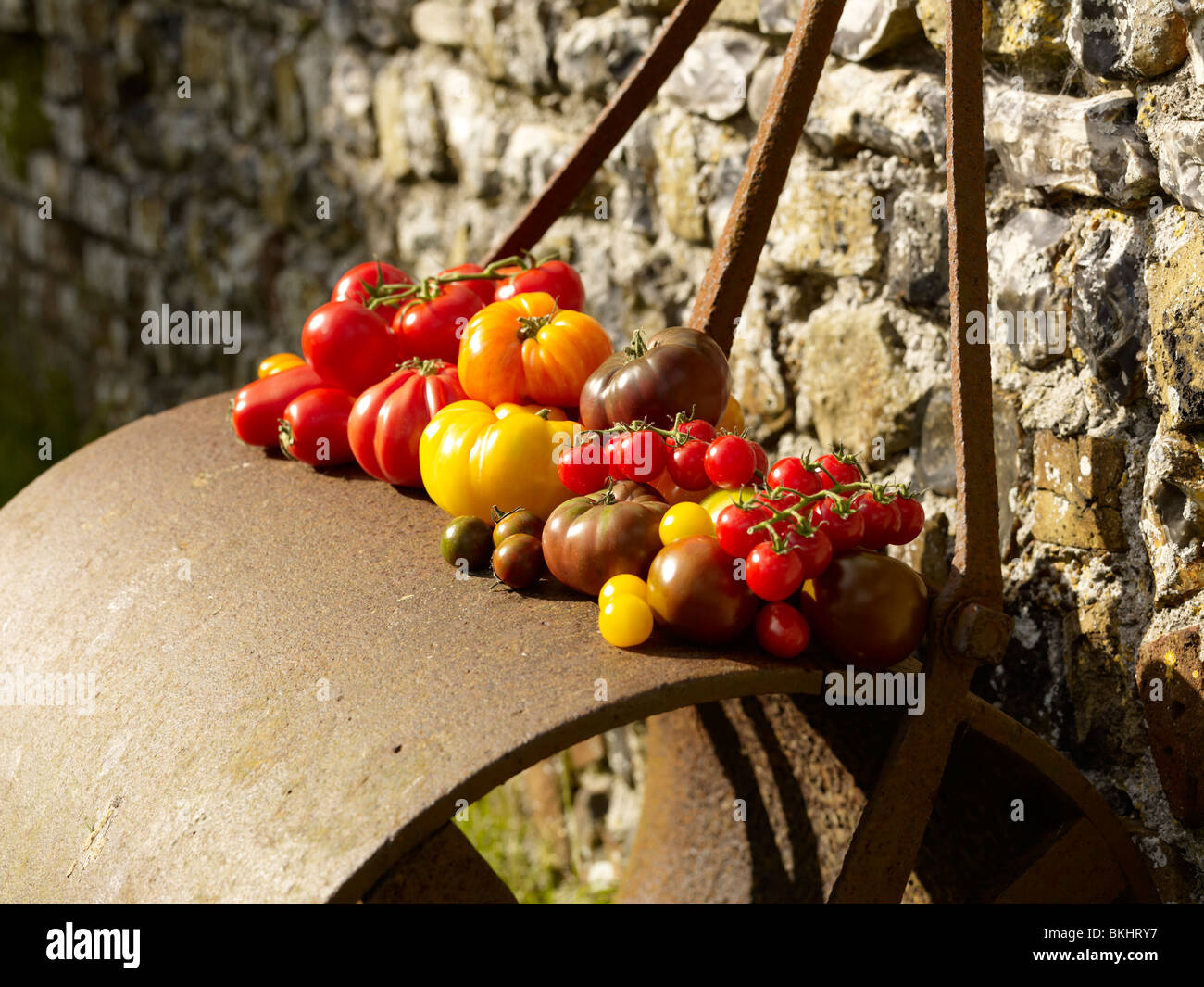 Garden Roller Stock Photos & Garden Roller Stock Images - Alamy