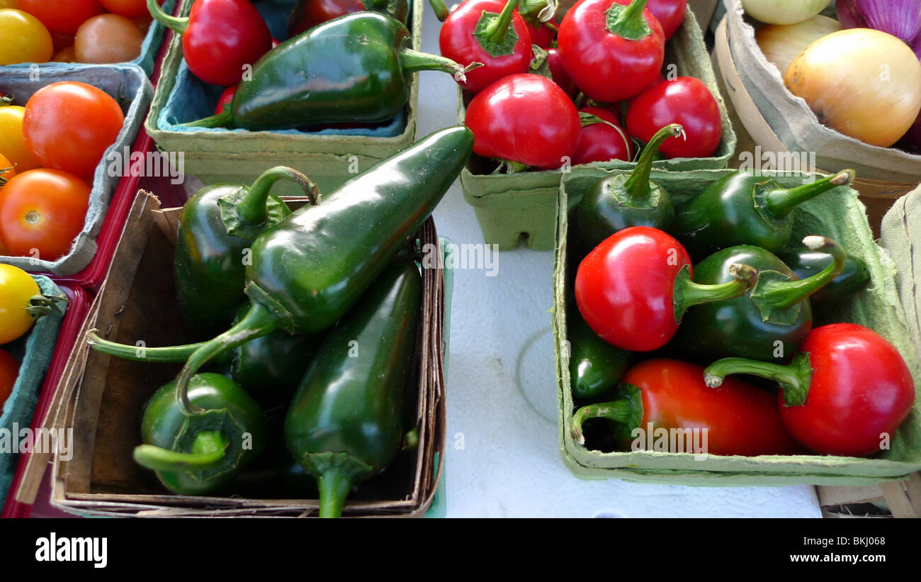 Freshly picked organic peppers on display at farmers market. - Stock Image
