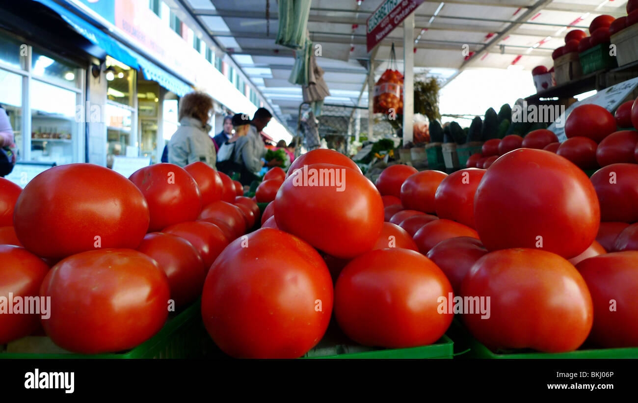 Freshly picked organic tomatoes on display at farmers market. - Stock Image