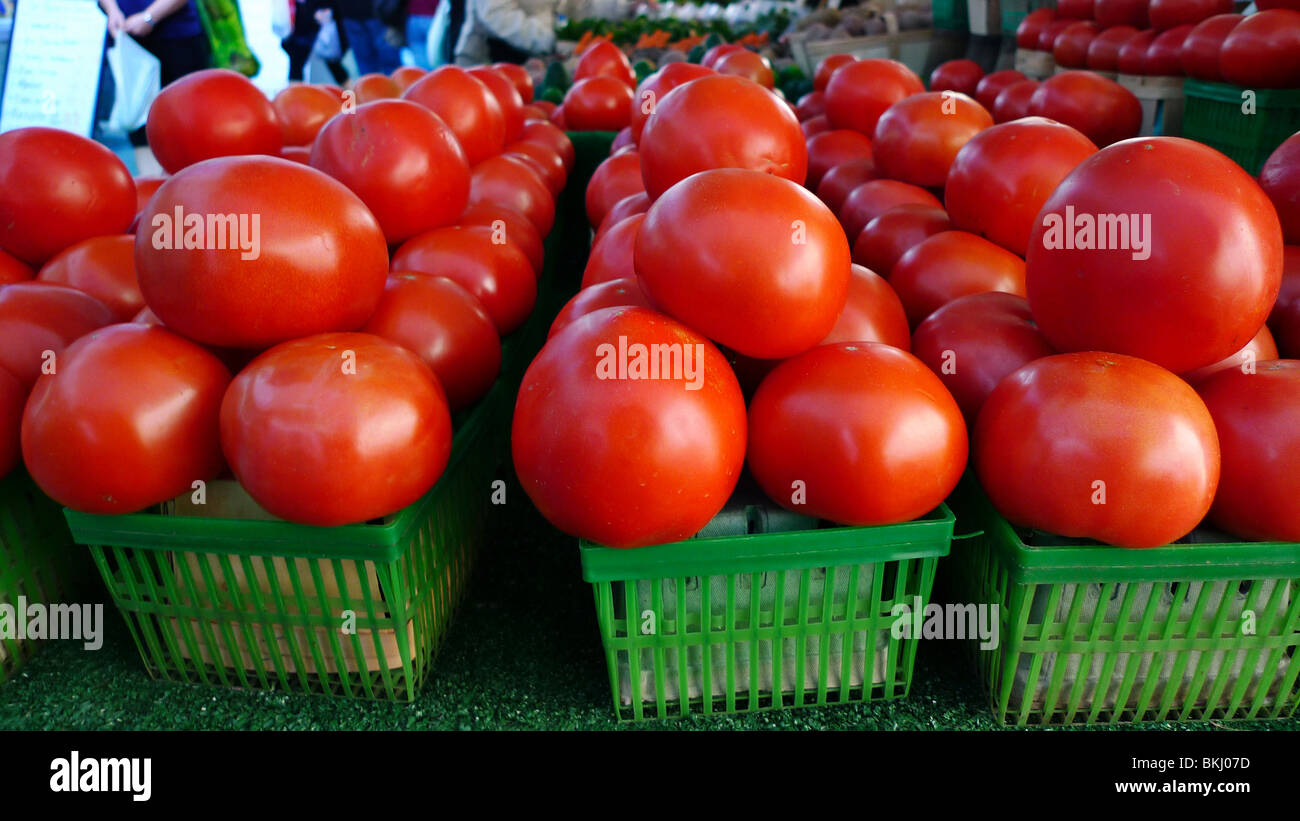 Freshly picked organic tomatoes on display at farmers market. Stock Photo