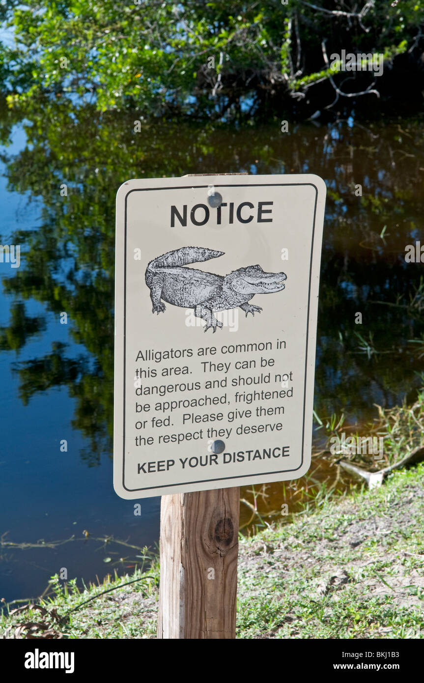 alligator warning sign stock photos alligator warning sign stock