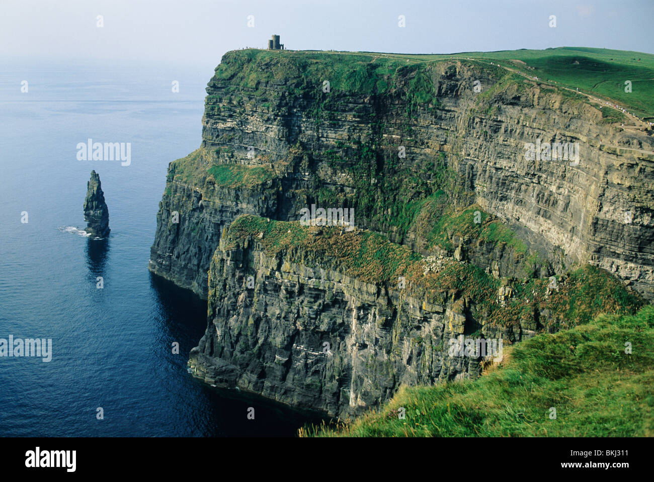 Ireland, County Clare, Cliffs of Moher. - Stock Image