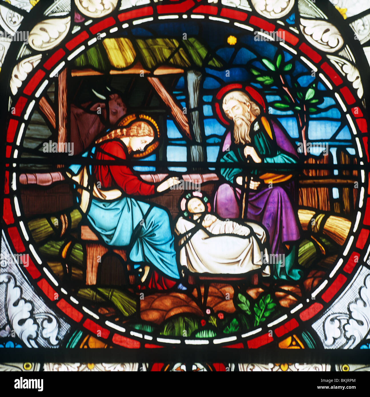 Stained Glass Nativity High Resolution Stock Photography And Images Alamy
