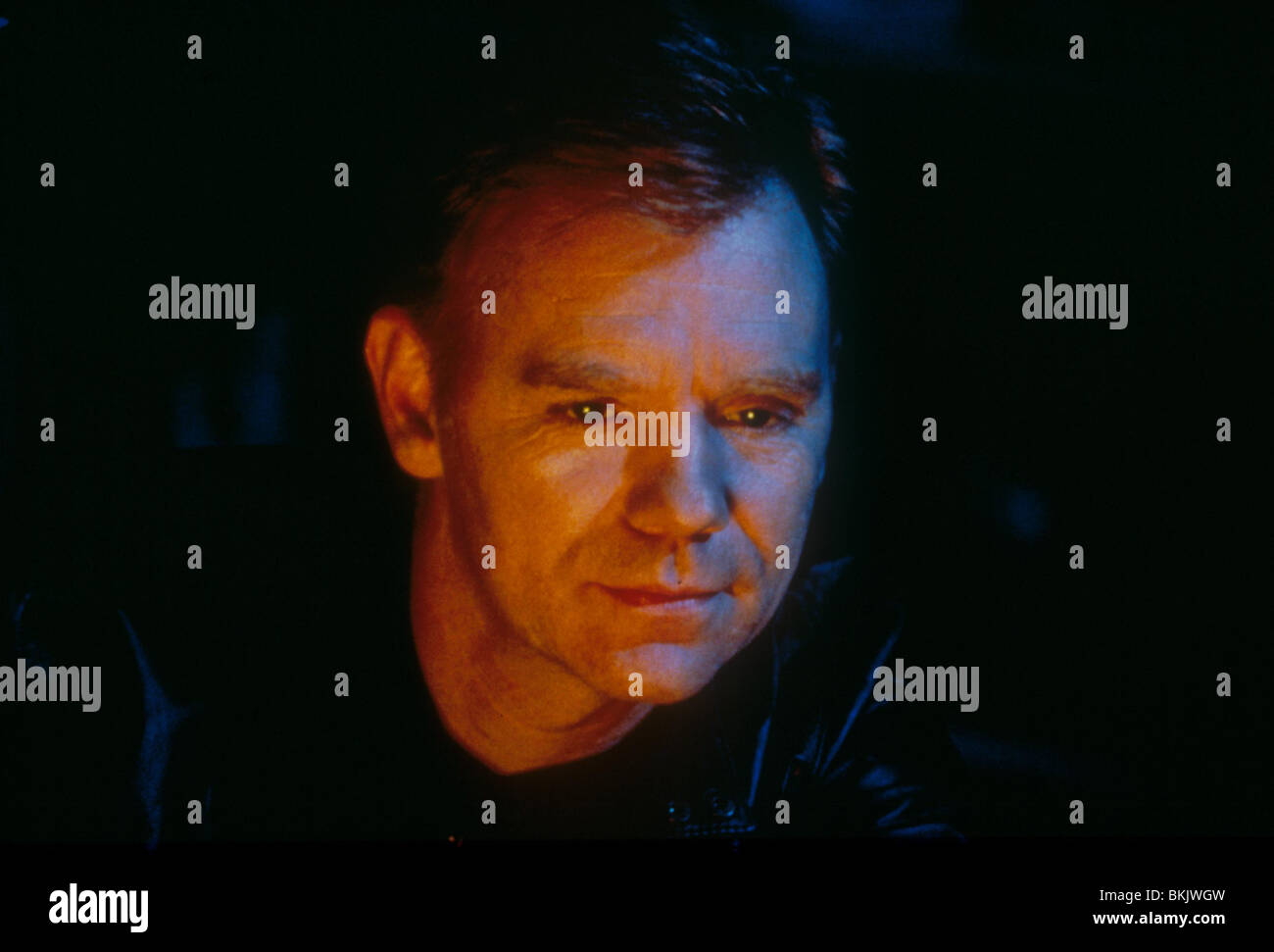free-naked-pictures-of-david-caruso-plum