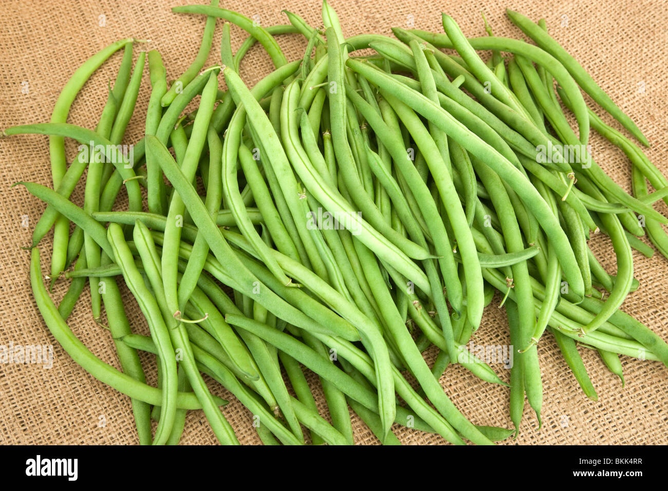 String Beans High Resolution Stock Photography and Images   Alamy