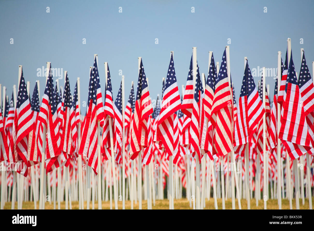 A Display Of Many Flags Of The United States Of America - Stock Image