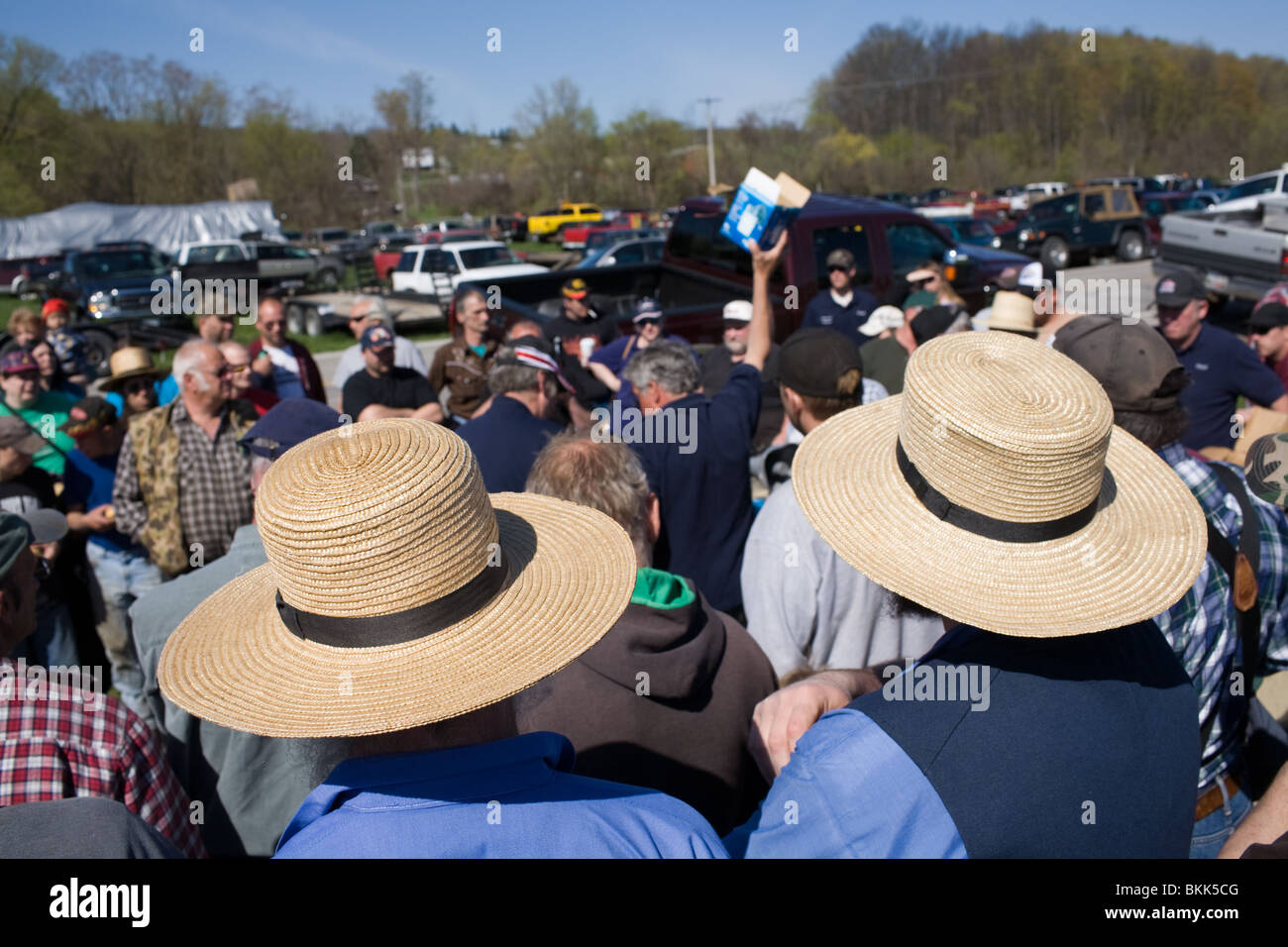 Amish men in straw hats at farm auction in central New York state ... 1a31b486c2a