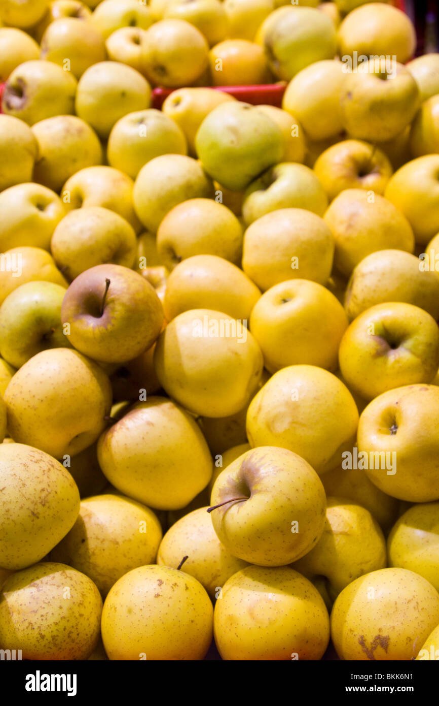 A bunch of apples, filling the entire photo. - Stock Image