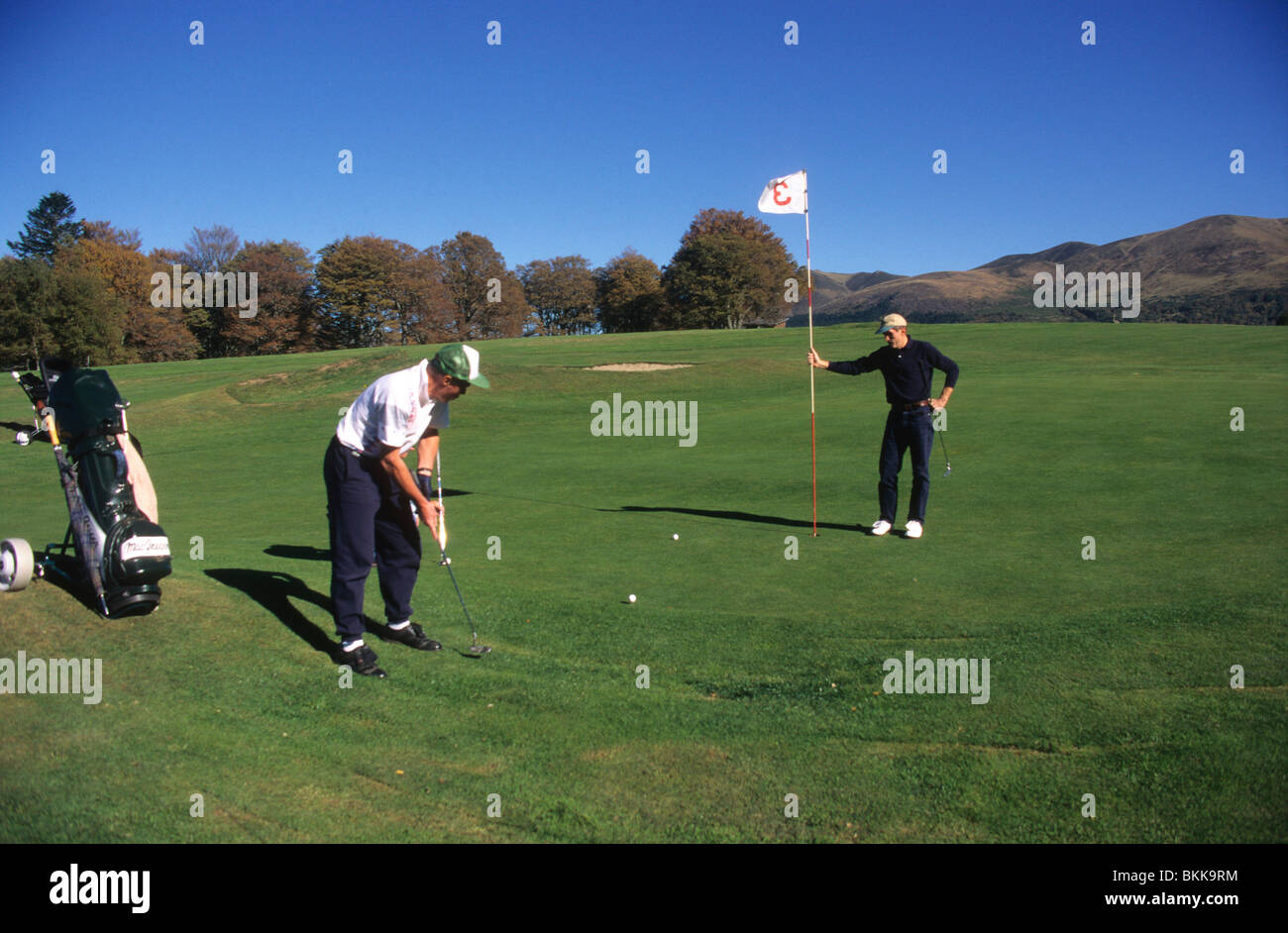 People playing golf - Golfers putting golf ball into hole. - Stock Image
