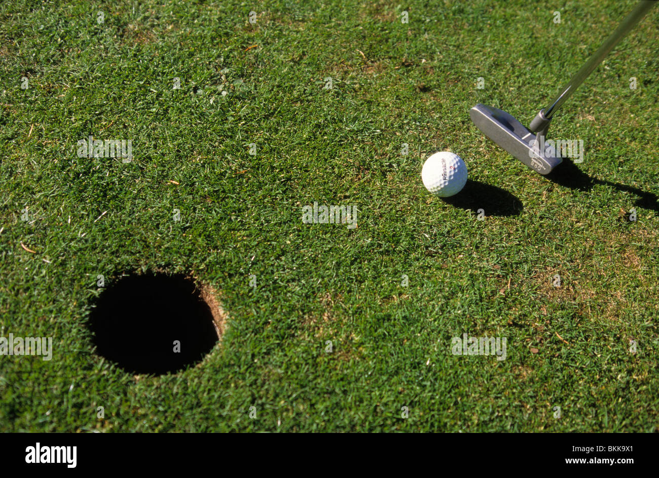 Person playing golf and putting a ball close up elevated view - Stock Image