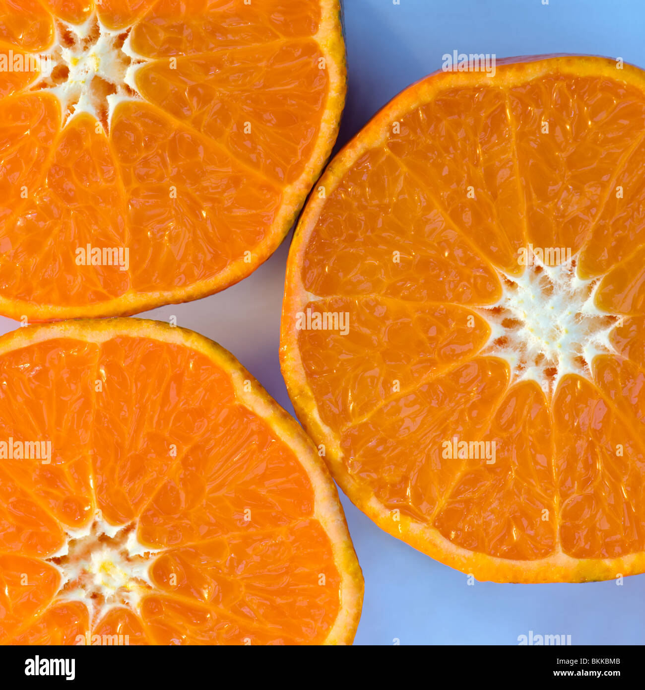 Studio shot of Clementine orange halves, which are a variety of mandarin orange, displayed on a muted white background - Stock Image