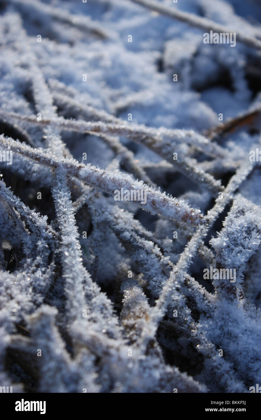 Macro shot of mid winter frost on the ground - Stock Image