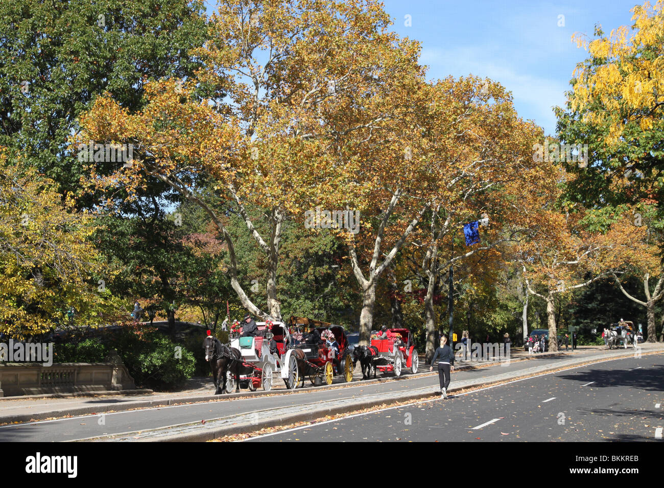 New York City Central Park Horse Drawn Carriages - Stock Image