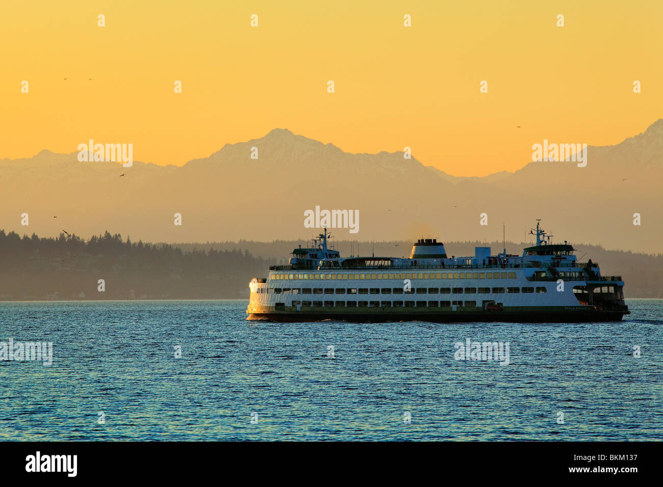 Washington state ferry in Elliott Bay with the Olympic mountains in the distance - Stock Image