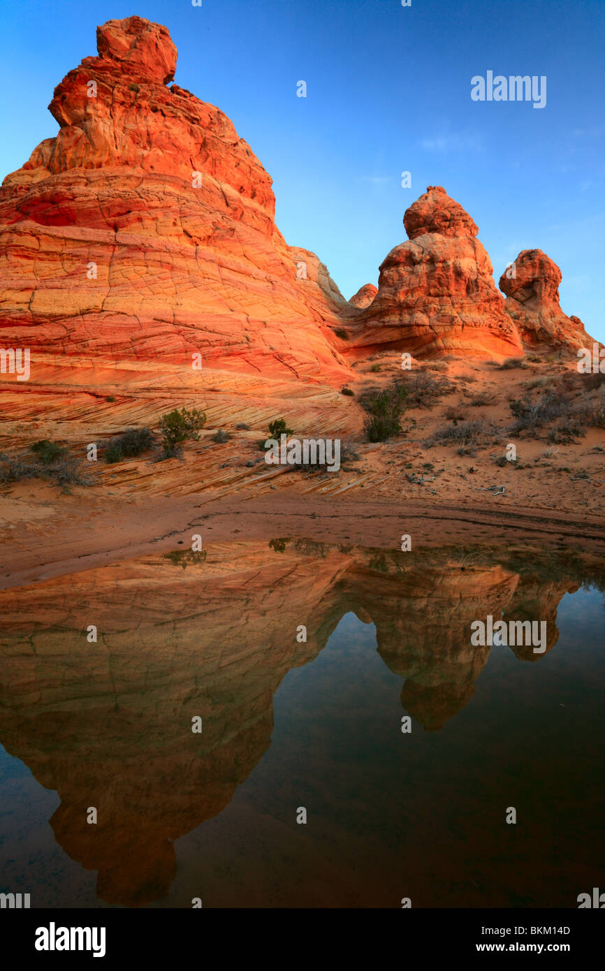 Rock formations reflect in a small pool of rainwater in the Teepees unit of the Vermilion Cliffs National Monument, - Stock Image