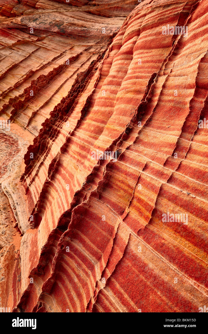 Details in striated sandstone formations in Vermilion Cliffs National Monument - Stock Image