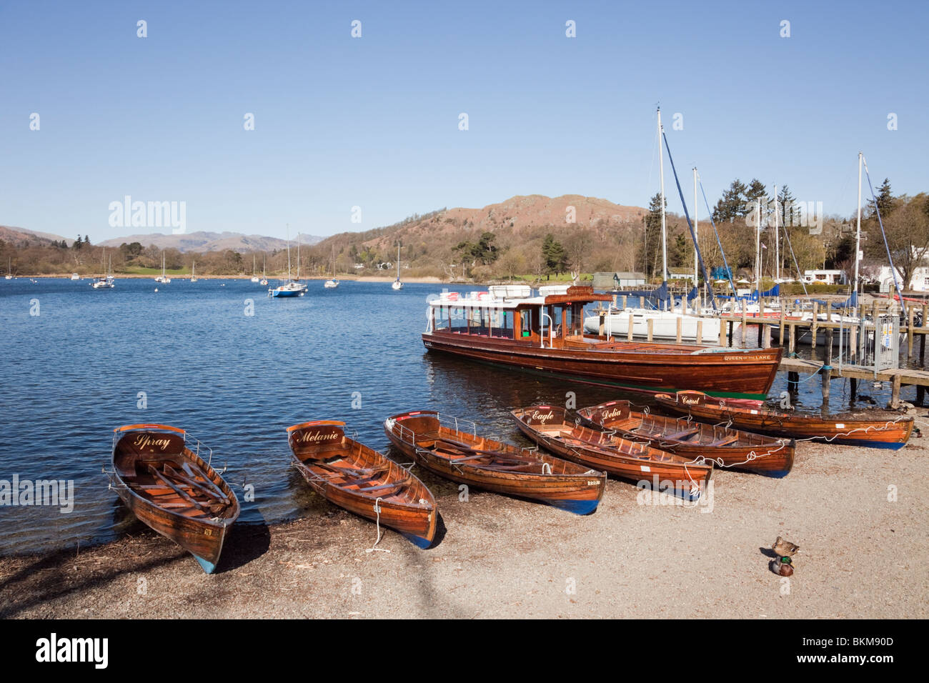 Waterhead, Ambleside, Cumbria, England, UK. Rowing boats for hire on Lake Windermere lakeside in the Lake District - Stock Image