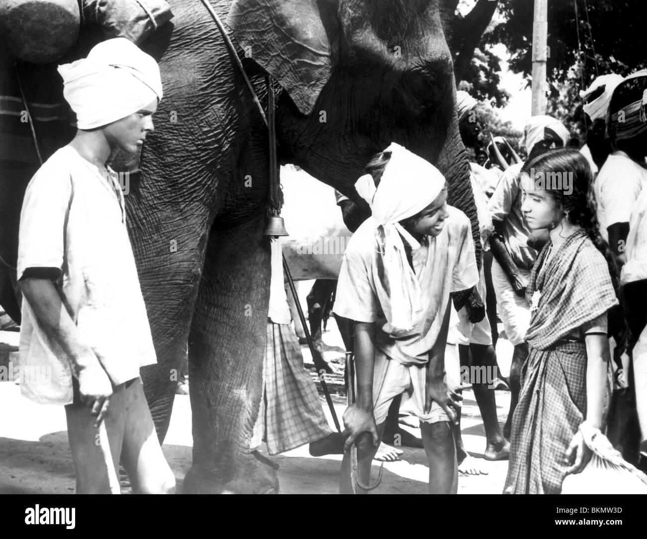 MAYA -1966 SAJID KHAN - Stock Image