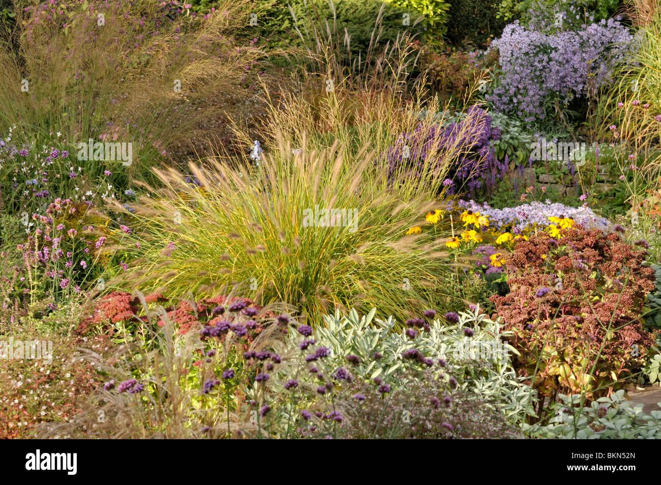 Dwarf Grasses Landscaping Dwarf fountain grass pennisetum alopecuroides in an autumnal dwarf fountain grass pennisetum alopecuroides in an autumnal garden workwithnaturefo