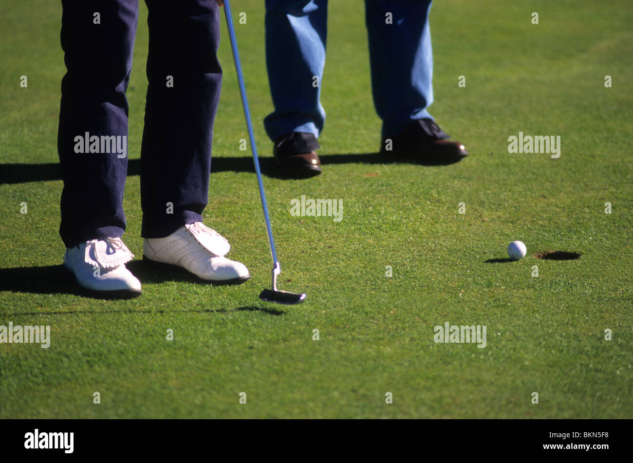 Two golfers putting golf ball into hole on a golf course. - Stock Image