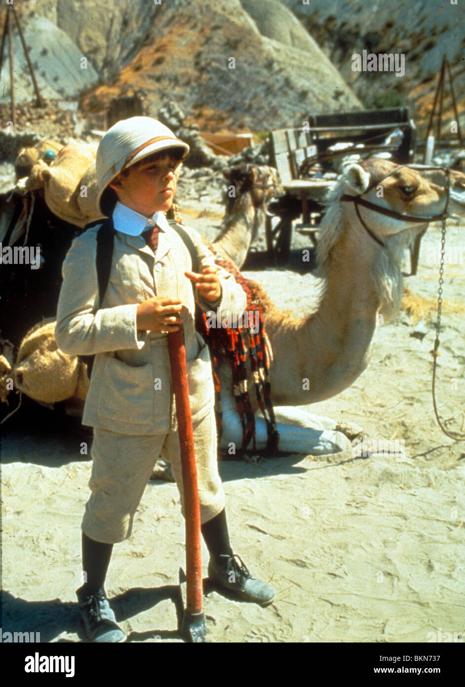 corey the camel