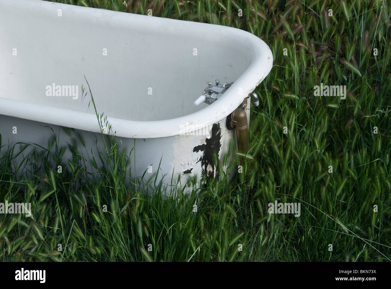 A bathtub sits in a grass field. - Stock Image