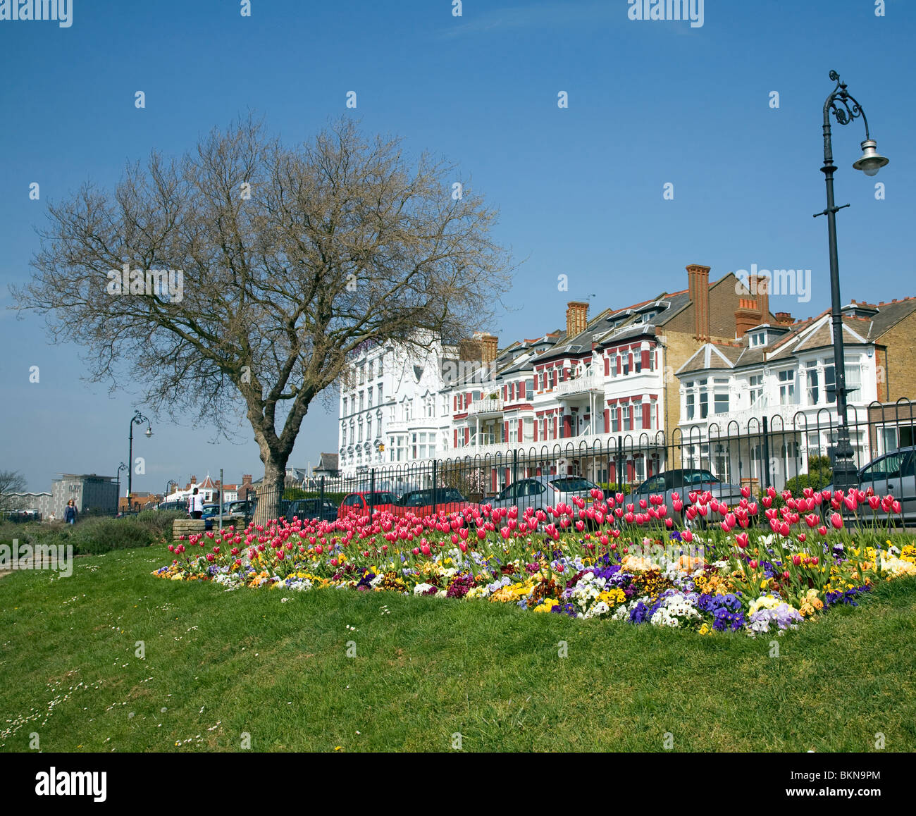 Flower beds in Cliff Gardens, Westcliff Parade, Southend, Essex Stock Photo