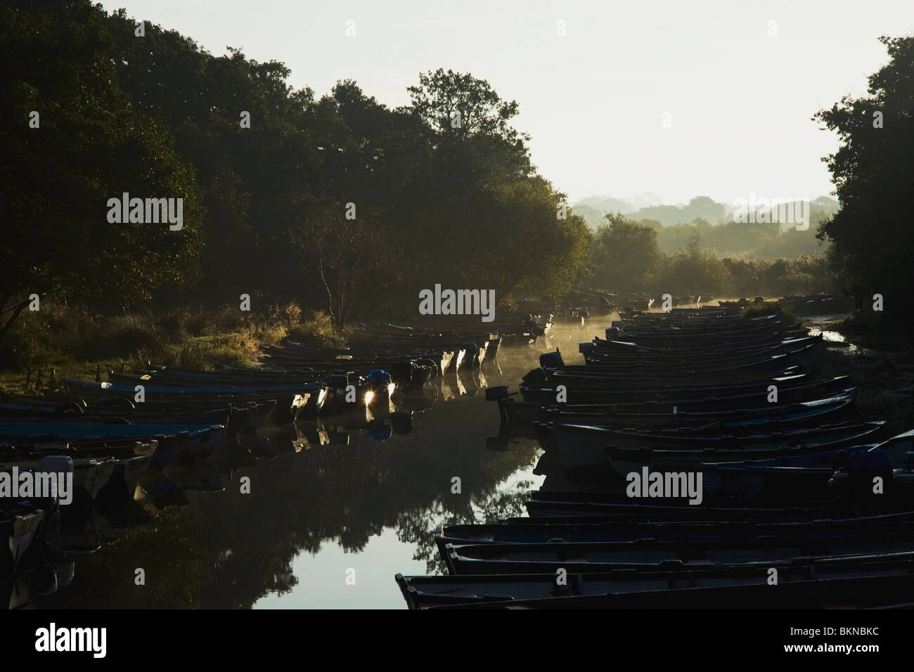 Killarney, County Kerry, Ireland; Boats Moored Along The Shore Of Lough Leane - Stock Image