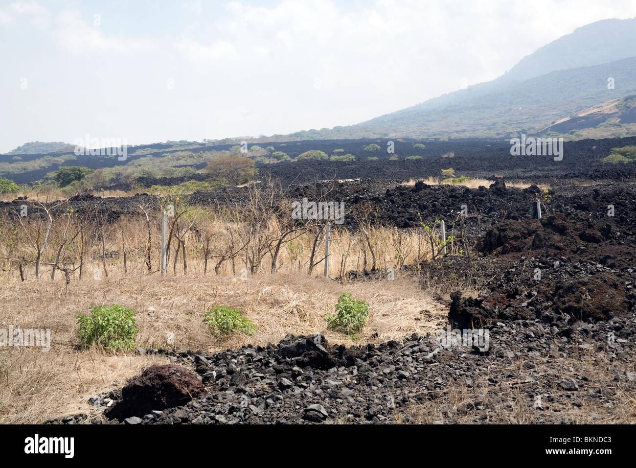 The lava field from the last eruption of Ilopango Volcano, El Salvador - Stock Image