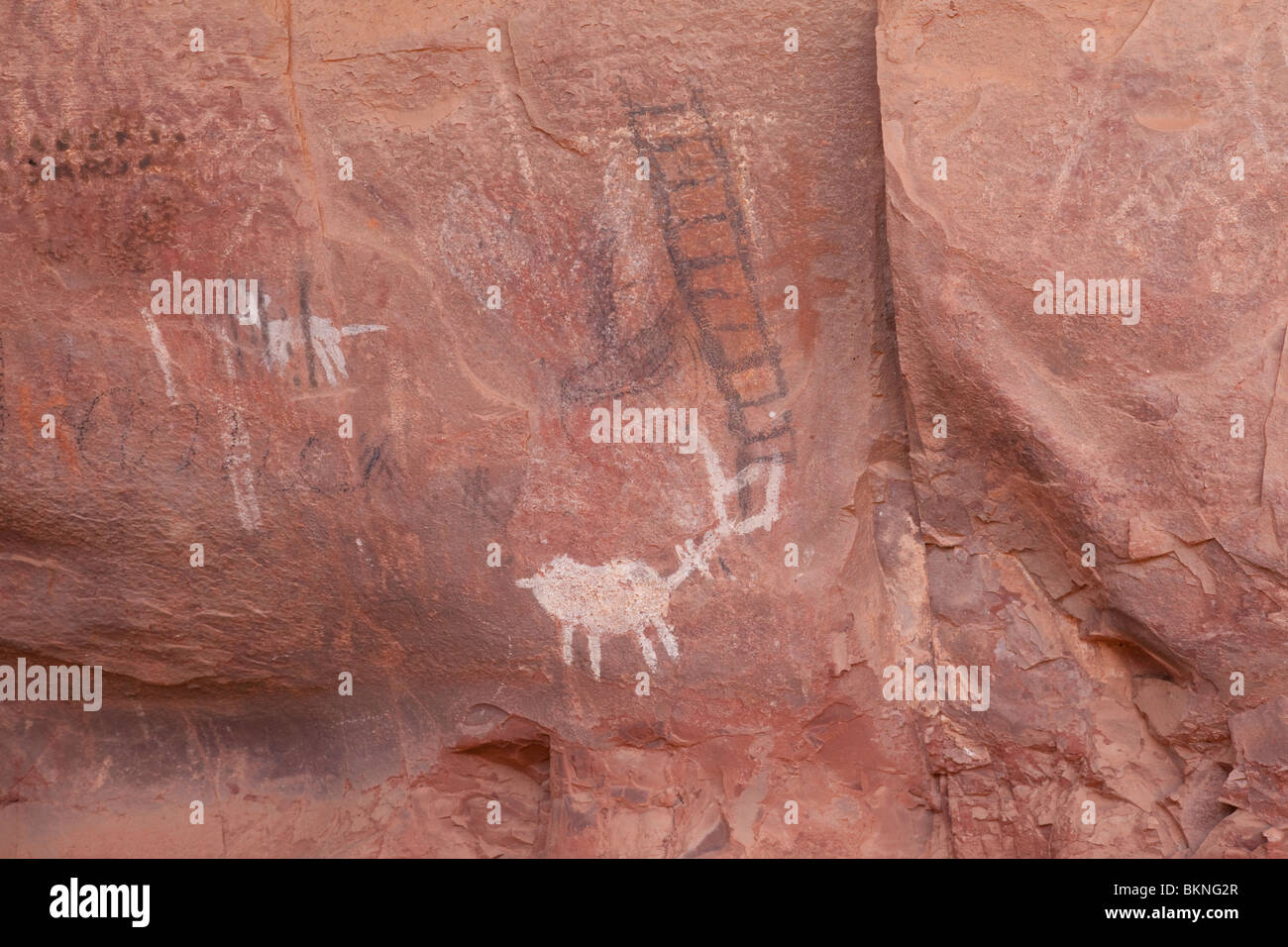 Palatki,Cliff,Dwelling,sedona,arizona,indian,usa Stock Photo