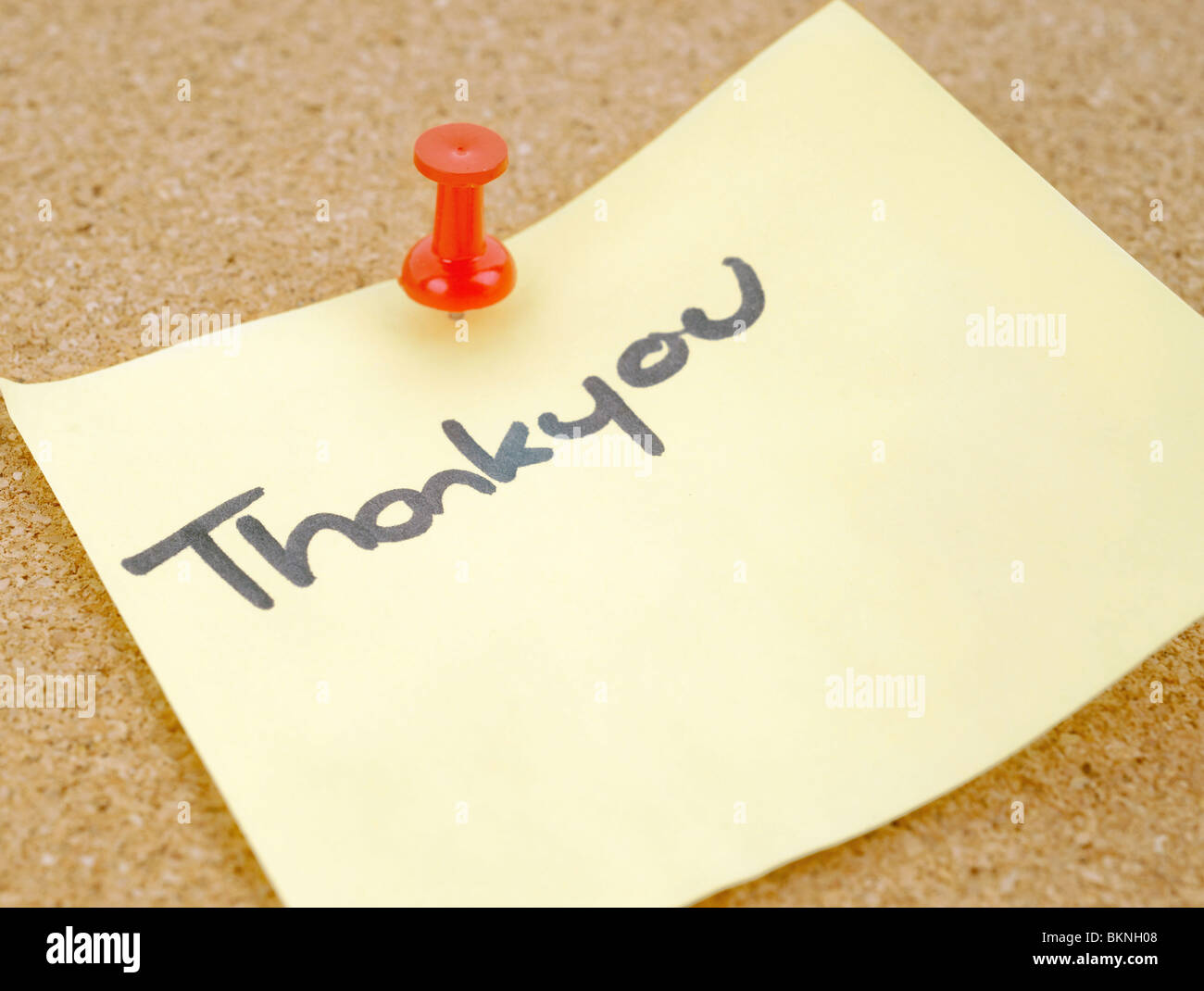 great image of a thankyou note pinned to a corkboard