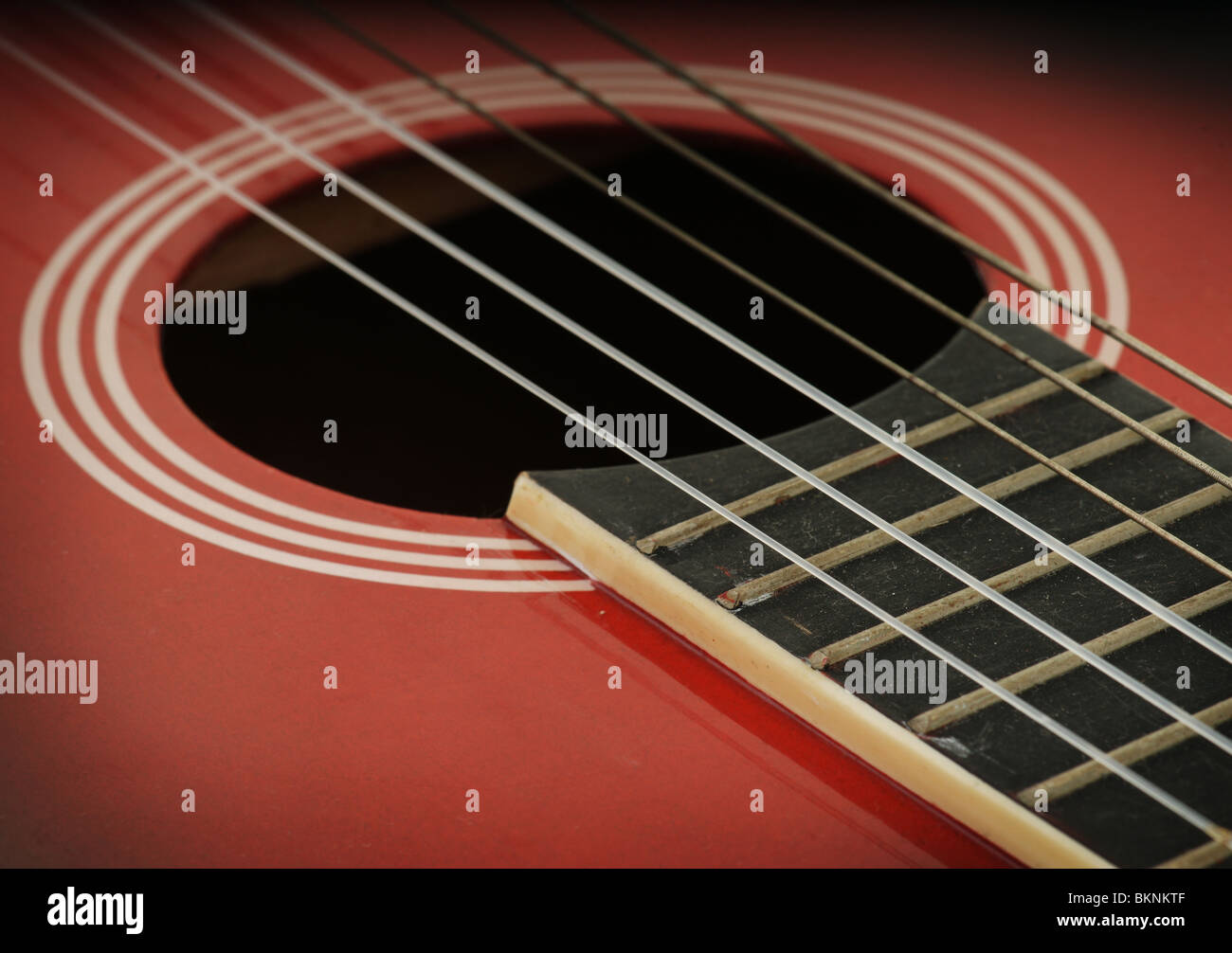 closeup of an acoustic guitar strings - Stock Image