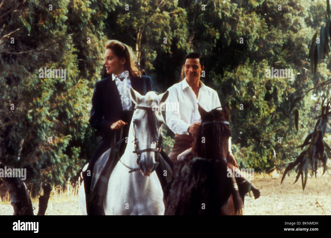 blood and sand movie 1989 download