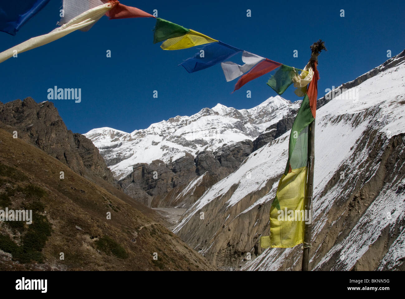 Prayer Flags and snow clad mountains, Thorung Phedi, Annapurna Circuit, Nepal - Stock Image