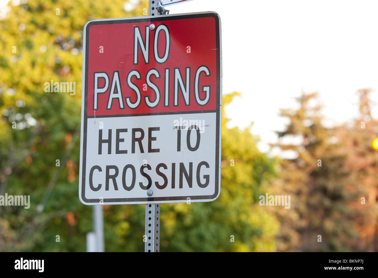 no passing crossing sign tree road street city - Stock Image