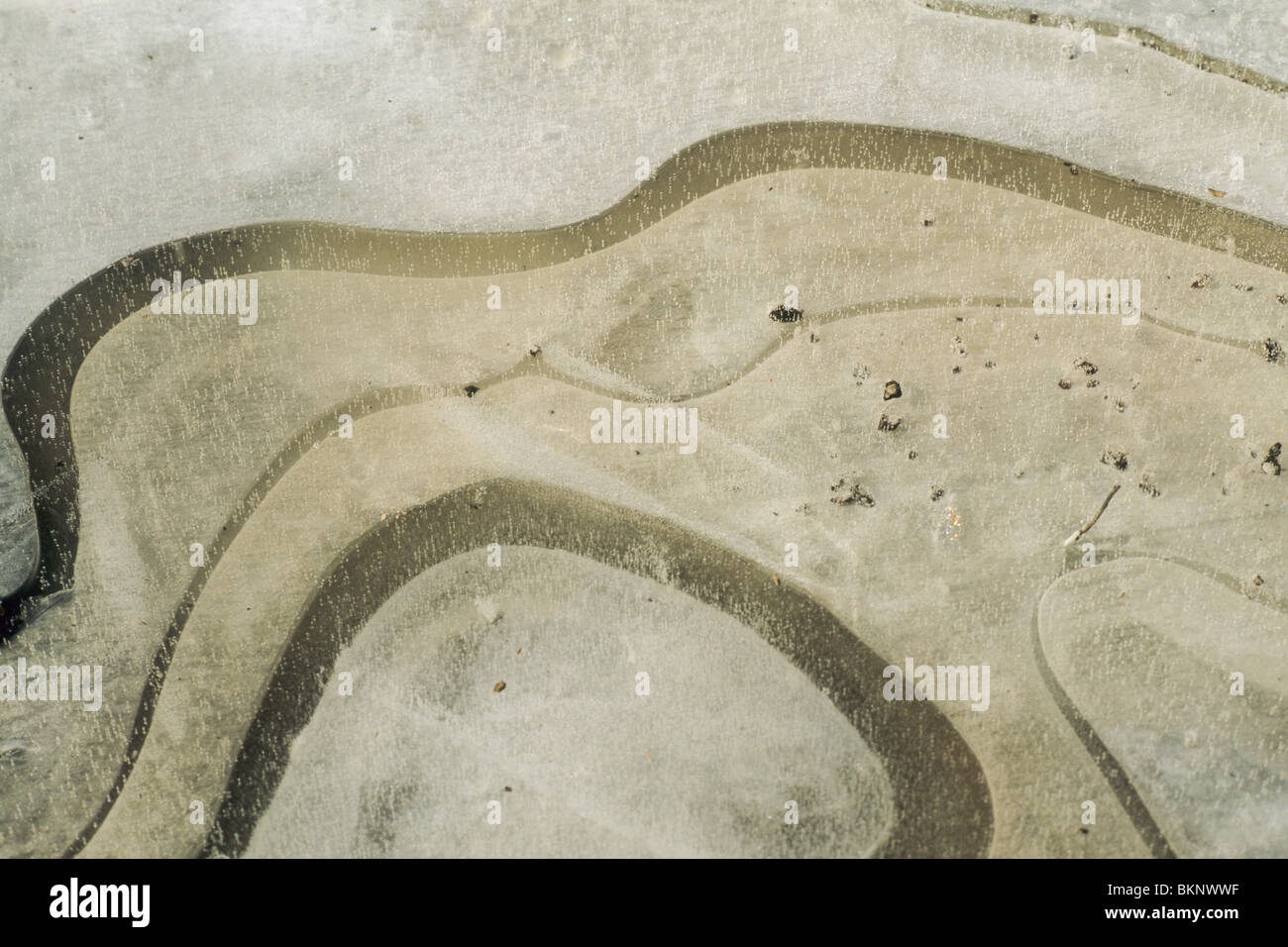 Movements of mud captured in ice - Stock Image