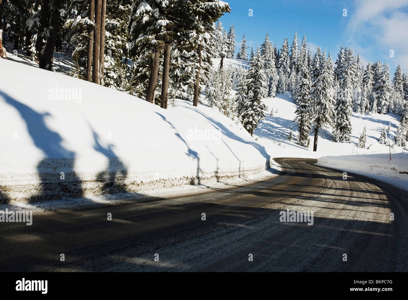 Oregon Cascades, Oregon, United States Of America; A Road And Fresh Winter Snow On Mount Hood - Stock Image