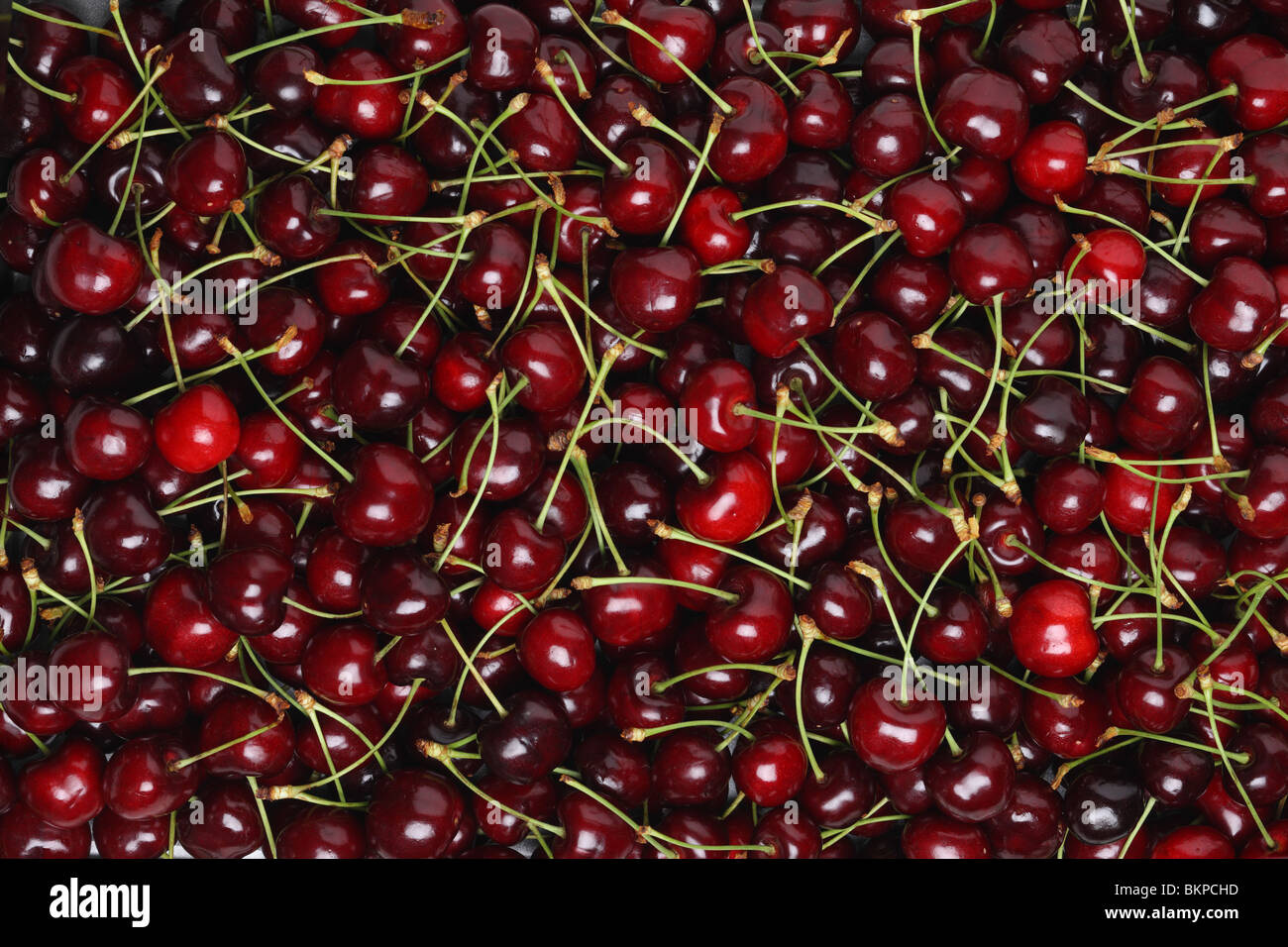 Background texture of fresh bing cherries - Stock Image